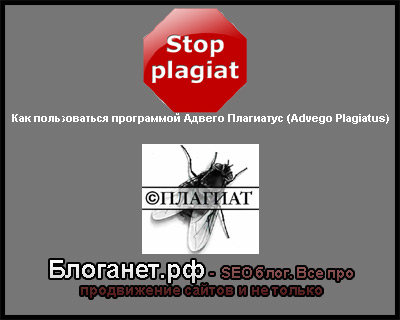 Как пользоваться программой Адвего Плагиатус (Advego Plagiatus)
